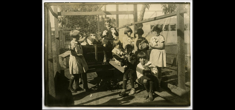 Photo of students with rabbits.